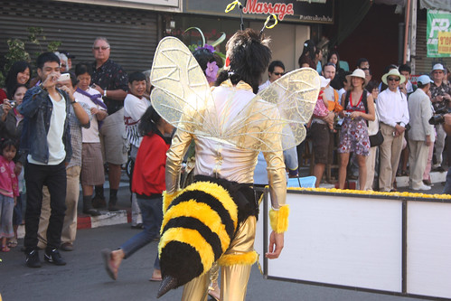 A bee at the Chiang Mai Flower Festival Parade