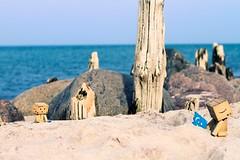 165/365 Die Danbos lassen den Drachen steigen / The Danbos let fly the kite (_vonStein) Tags: sun kite beach strand amazon balticsea sonne ostsee drachen danbo project365 revoltech flickrcolour projekt365 danboard