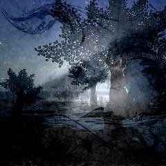 Sternennacht - Starry Night (2nd Magazine) Tags: jona starrynight ourtime coth sternennacht memoriesbook 2ndmagazine awardtree lightpaintersociety magicunicornverybest coth5