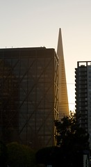TransAmerica, SF (Mark) Tags: sanfrancisco city sunset skyscraper downtown transamerica