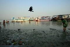 a crow | Kolkata (arnabchat) Tags: people india motion blur bird water river boats flying bath dynamic mud wide clay crow acqua kolkata bengal calcutta bangla westbengal hooghly canon1022 ghaat