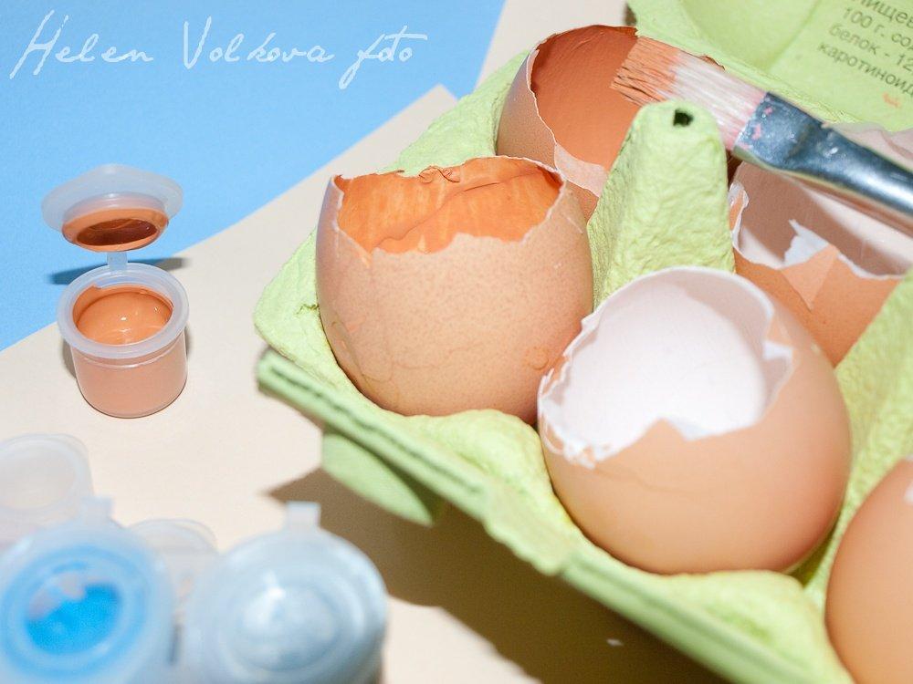 ex-eggs-5
