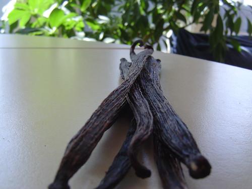 Bourbon Vanilla Bean