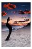 S Bend - Carlo Sand Blow. ([ Kane ]) Tags: ocean morning light sun colour beach water glass sunshine sunrise dawn sand qld queensland rays kane sunshinecoast rainbowbeach gledhill 50d sandblow colouredsand kanegledhill wwwhumanhabitscomau coolooladrive kanegledhillphotography