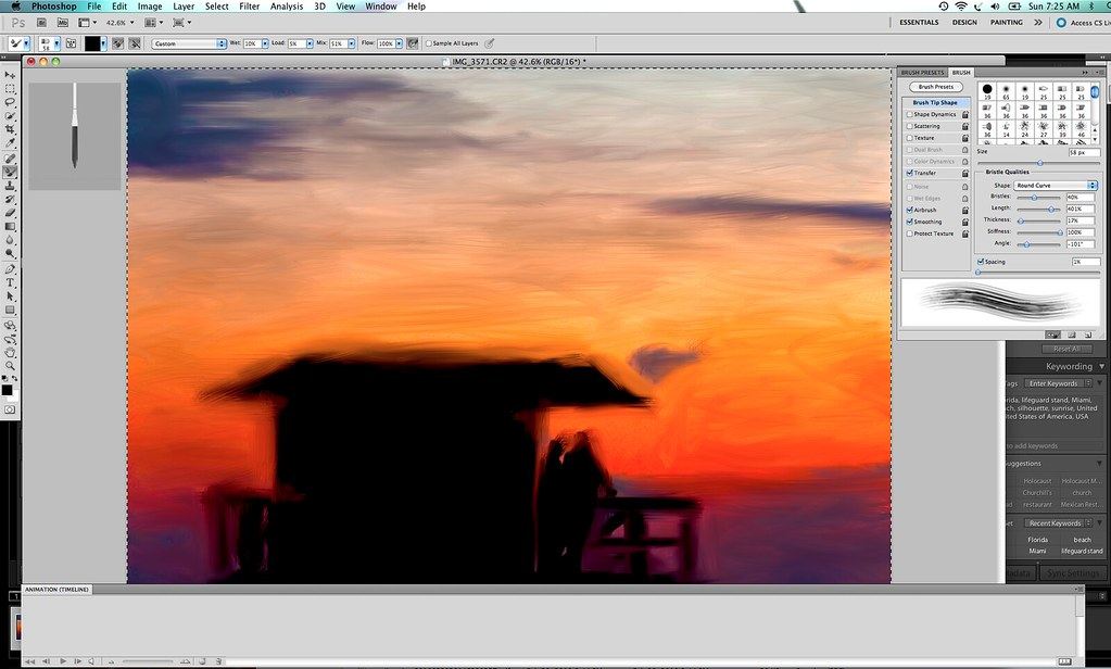 Painting in Photoshop CS5