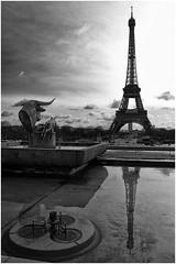 Trocadro, Tour Eiffel (Kozios) Tags: street blackwhite toureiffel trocadero riflessi francia bianconero reportage parigi parigi2010 maurizioromanokozios maurizioromano riflessiparigini