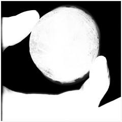 (Eugene Studitsky) Tags: white black silhouette backlight hand drink fingers minimal scan minimalism scanography scannography epsonperfection4870photo