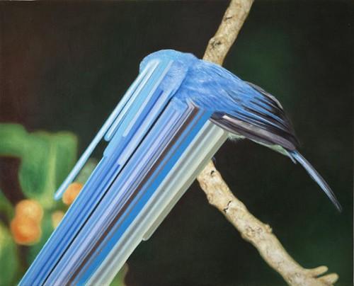 流淌颜色的小鸟 - 碌碡画报 - 碌碡画报