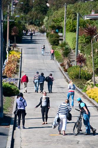 Dunedin - The World Steepest Street 02