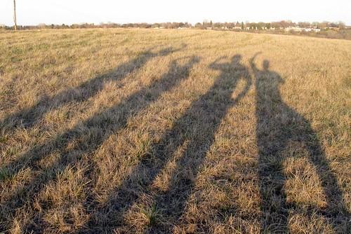 North Dakota Prairie Shadows
