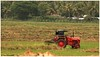 Art of Farming!! (Naseer Ommer) Tags: india tractor canon farming kerala ploughing mahindra naseerommer concordians canoneos5dmarkii discoverplanet dpintl