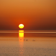 Sunrise(FrontPage) (PP008) Tags: lake toronto ontario canada sunrise square nikon 11 scarborough frontpage 80200mm explored d700