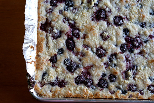 Berry Cobbler Pie Bars | Joy the Baker