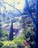 Sirk view (JStark 4) Tags: fuji velvia 6x9 100 douglassirk mamiyauniversalpress surbubanality