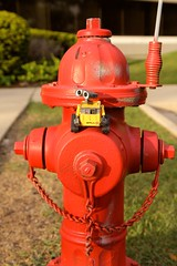 Fire Hydrant (twmjedi) Tags: red canon toy rebel disney firehydrant pixar 365 efs 1755 walle 1755mm project365 efs1755 canonefs1755mmf28isusm canonefs1755mmf28 t2i 365toyproject walle365
