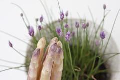 ////// (Cevì) Tags: primavera rosa viola asparagi fiorellini maquantosonofallici