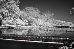 Park IR (M Zappano) Tags: city longexposure bridge blackandwhite white black reflection water canon river md downtown camden maryland easternshore reflected infrared salisbury chesapeake eastcoast chesapeakebay delmarva easternshoreofmaryland wicomico wicomicoriver downtownsalisbury canon50d shoredelmarvaeastern salisburycitypark