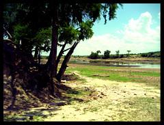 Ruaha-Fluss