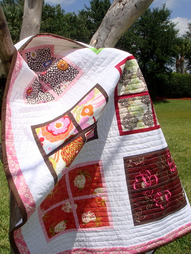 Windows Quilt in a Tree
