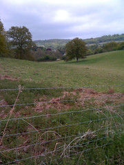 View towards Shere Photo