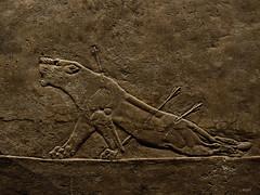La leona herida. Wounded lioness. (Javier Enjuto García) Tags: london olympus londres britishmuseum e510 museobritánico roybatty ysplix enjuto javierenjuto javierenjutogarcía