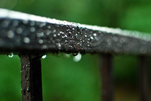 raindroprail