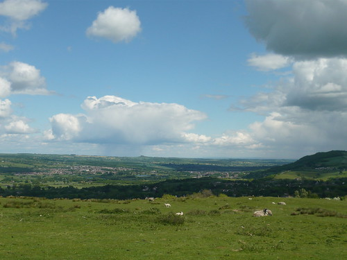 Otley from Moors
