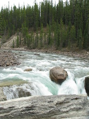 Sunwapta Falls (Dan Stanyer (Northern Pixel)) Tags: park canada mountains water river rockies waterfall rocky fast canadian falls national alberta parkway banff icefields sunwapta