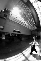 la femme de l'escalier (louistib) Tags: lines stairs shadows contrejour lignes ladéfense défense escaliers againstthelight louistib louisthibaudchambon wwwltchamboncom img47741c
