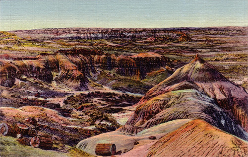 The painted desert, Arizona [P.D. 29]