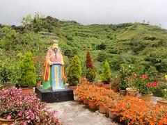 Statut kitch de la roseraie