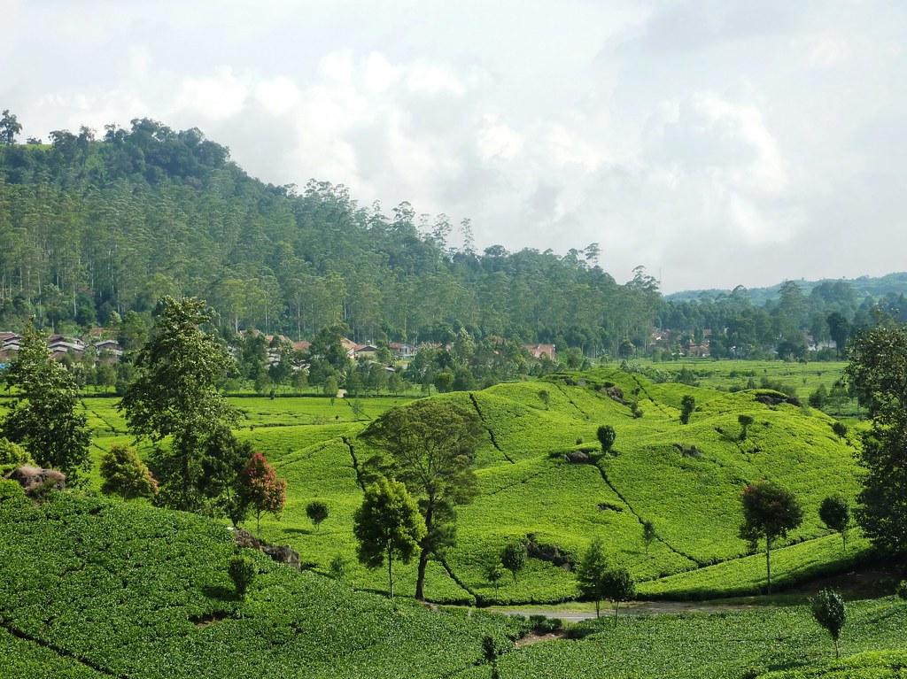 Java-Bandung-Region (155)