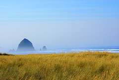 Oregon coast (butacska) Tags:
