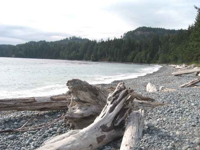 deserted beach in Vancouver Island