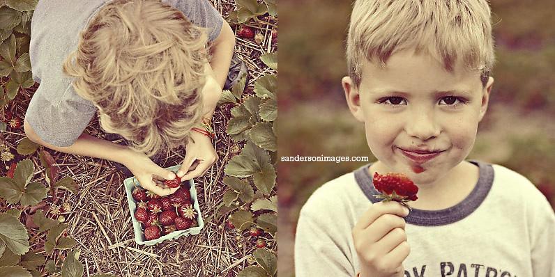 002berries