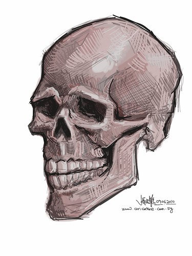live sketching of skull on iPad