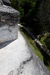 baudchon-baluchon-guatemala-tikal-55