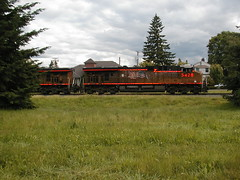 UP5428 reflects the flash?