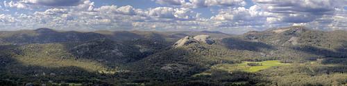 Girraween Panorama