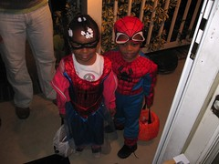 Spiderwoman and Spiderman