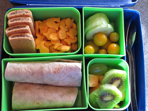 Bento Lunch Box 10-1-10