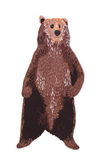 bear 72