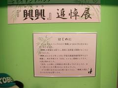 memorial exhibition for Kou Kou (TaoTaoPanda) Tags: panda koukou ojizoo