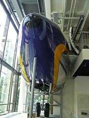 N7515A (D-ABOF)