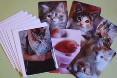 The Darling Cards