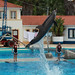Golfinhos a Saltar III / Dolphins Jumping III