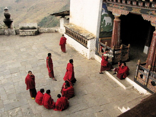 dzong activity