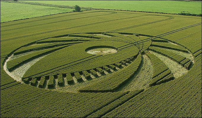 Crop-Circle_682_846354a