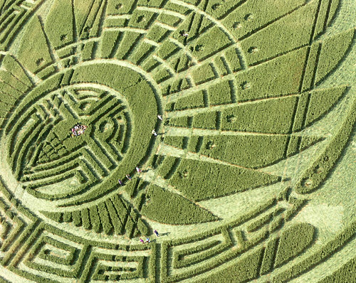 crop-circle-mayan-3