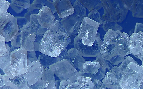 Magnified Image of Sugar 20X Magnification